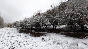 Kaşın yüksek kesimlerine kar yağdı