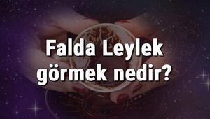 Falda Leylek görmek nedir Kahve falında leylek görmenin anlamı
