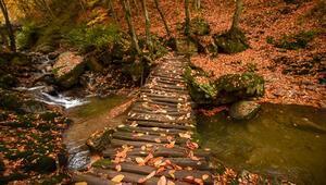 Turizm cenneti Oylatta sonbahar güzelliği