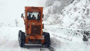 Tuncelide kar yağışı nedeniyle 25 köy yolu ulaşıma kapandı