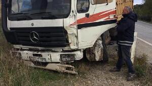Malkarada kamyon ile panelvan  çarpıştı, 3 yaralı
