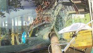 Otobüsün camından direk girdi Şoför kıl payı ölümden döndü