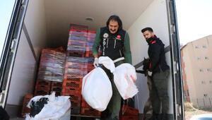 TIRdaki meyve kasaları arasında 26 kilo uyuşturucu ele geçirildi