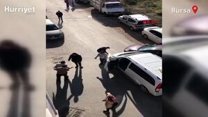 Kaza sonrası sinir krizi geçirip diğer sürücünün üzerine yürüdü