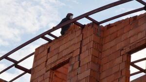 Daireleri gezme bahanesiyle girdiği inşaatın çatısında intihara kalkıştı