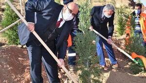 Aksaray Belediyesi, Öğretmenler Günü anısına 40 bin fidan dikti