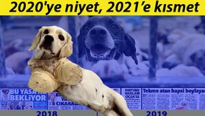 2020ye niyet, 2021e kısmet