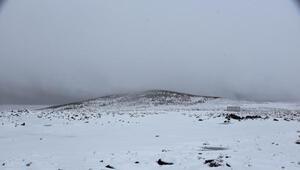 Siverek'te kar yağışının ardından Karacadağ beyaza büründü