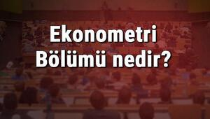 Ekonometri Bölümü nedir ve mezunu ne iş yapar Bölümü olan üniversiteler, dersleri ve iş imkanları