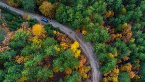 Sındırgı sonbahar güzelliği ile göz kamaştırıyor