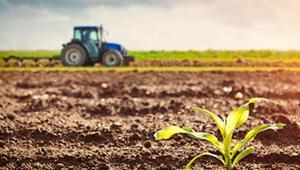Cigna'dan KOBİ ve çiftçilere özel ürün