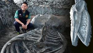 Son dakika haberler: Taylandda buldular... Tam 5 bin yaşında