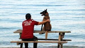 Narkotik köpeği Çayra emekli oldu