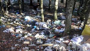 Boluda tepki çeken görüntü Yaylada ormanlık alan çöplüğe döndü