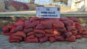 Edirne'de 3 ton kaçak midye ele geçirildi