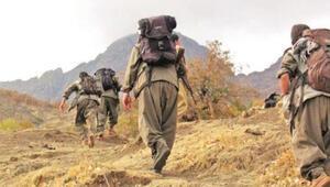 Terör örgütü PKK'YA Kuzey Irak'ta tasfiye