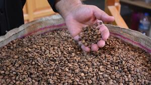 Buranın kahvesi 94 yıldır aynı taş değirmende öğütülüyor