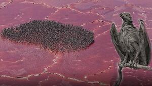 Dünyanın en sıra dışı yerleri... Listede öyle bir yer var ki canlıları taşa dönüştürüyor