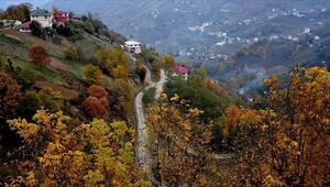 Trabzon yaylalarında sonbahardan kalan renkler görsel şölen sunuyor