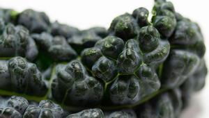 Rengine bakarak anlayabilirsiniz Bu sebzeleri yediğinizde...