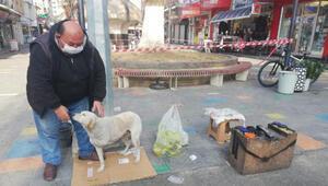Sahiplendiği engelli köpeği yanından ayırmıyor