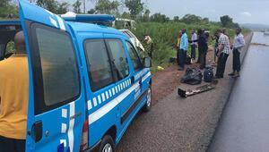 Yolcu otobüsleri çarpıştı : 13 ölü, 7 yaralı