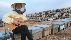 Dünya turuna çıkan Alman, arı kovanı üzerinde gitar çaldı