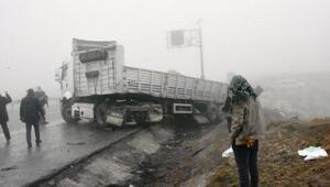 Bitlis'te etkili olan sis kazalara neden oldu