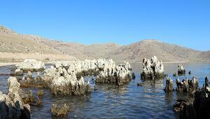 Son dakika: Her santimi yüzlerce yılda oluşuyor Van Gölünde ortaya çıktı