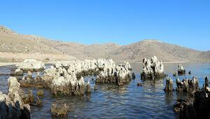 Van Gölü çekildikçe dünyanın en büyük mikrobiyalitleri gün yüzüne çıktı