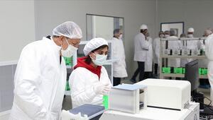 Türkiyenin ilk entegre güneş paneli fabrikasında kapasite katlanacak