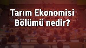 Tarım Ekonomisi Bölümü nedir ve mezunu ne iş yapar Bölümü olan üniversiteler, dersleri ve iş imkanları
