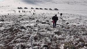 Off-Road tutkunları, yaban hayatı için karlı dağları aştı