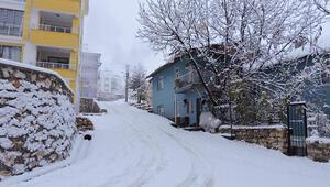 Tunceli'de kar yağışı etkili oldu, 132 köy yolu kapandı
