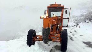 Tuncelide kardan kapanan 83 köy yolu, ulaşıma açıldı
