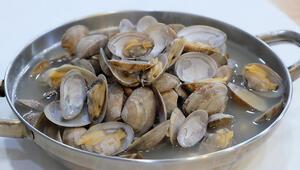 Deniz tarağı tarifi Deniz tarağı nasıl yapılır ve malzemeleri nelerdir