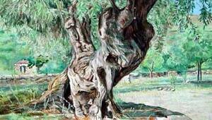 Ölmez ağacı dile gelseydi...