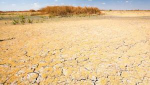 Dünyada önümüzdeki yıllarda kuraklık artacak