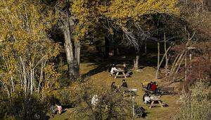 Türkiyede son 50 yılın en sıcak sonbahar mevsimi yaşandı