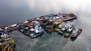 Zonguldakta boyu küçük hamsi avlayan 4 tekneye 200 bin lira ceza