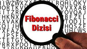 Fibonacci Dizisi nedir ve kim tarafından bulunmuştur Fibonacci Dizisi özellikleri