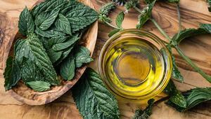 Koronayla Mücadelede Doğal Antibiyotik; Günde 3 Kez Tüketilebilir