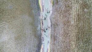 Sazlıdere Barajı'nda korkutan manzara Havadan böyle görüntülendi