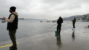 Olta balıkçılarına 3 metre şartı... Arnavutköy sahilde uyuldu, teknede bozuldu