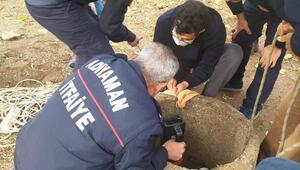 Kuyuya düşen keçi kurtarıldı