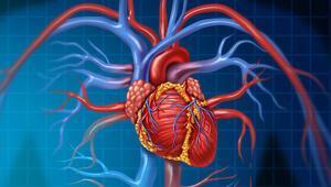 Covid-19'un kalp üzerindeki etkileri neler