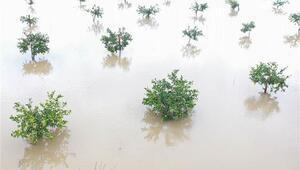 Turuncu alarm verilmişti, yağış 3 gün etkili oldu Antalyada bu yılın en yüksek yağış miktarı...