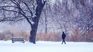 ABDde kar fırtınası telaşı: İnsanlar ciddiye almalı