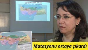 Son dakika haberler: Çarpıcı araştırma... Atık sulardaki koronavirüs haritası belirlendi Mutasyonu ortaya çıkardı