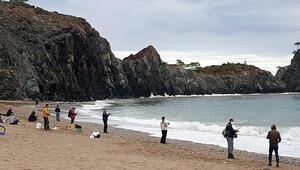 Dalgalar üretim çiftliğine zarar verdi; halk balıkları yakalamak için sahile koştu